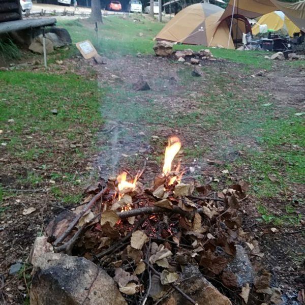 小川山焚き木