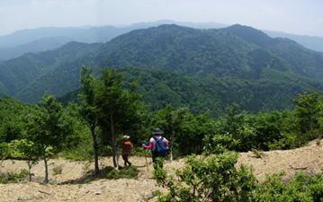おにゅう峠を過ぎて県境稜線を望む、中央がP803