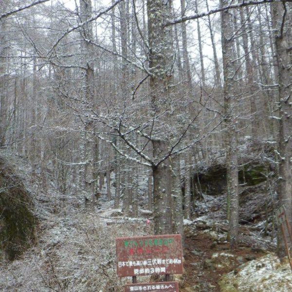 1. 登山口。樹林帯ですが、気の抜けないトラバースが続きました。