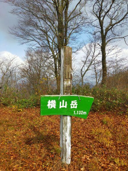 山頂付近は落葉していました
