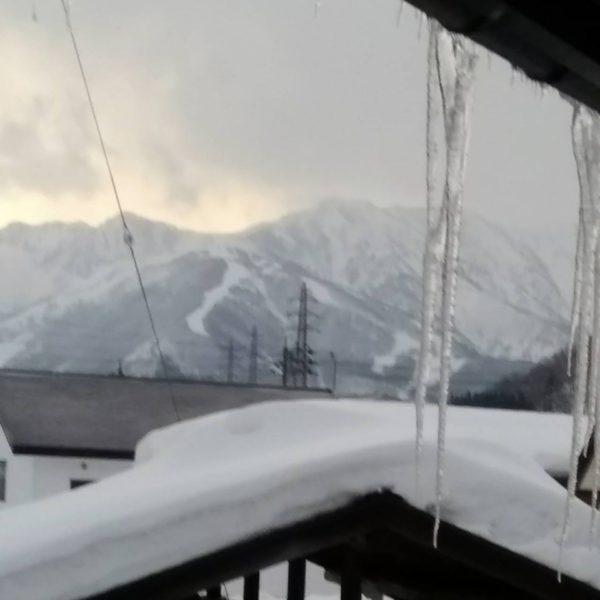 白馬・岩岳スキー
